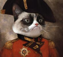 Grumpy cat General by CAnastase