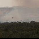 Skycrane at Barnawartha Fire by Natalie Ord