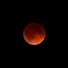 Lunar Eclipse (April 15, 2014) by Daniel Owens
