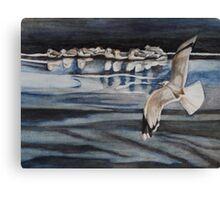 Seagulls On Ice Canvas Print