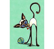 Simaese Cat   Yarn Thief Photographic Print