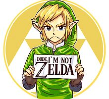 Dude, I'm Not ZELDA! by rustenico