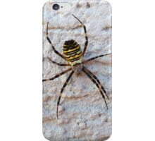 Spider macro photography iPhone Case/Skin