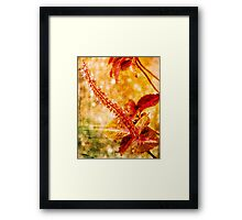 Big Red Stamen Framed Print