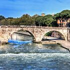 Bridge over the Tiber by vivsworld
