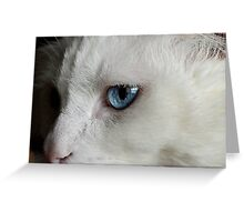 She says so much with her eyes Greeting Card