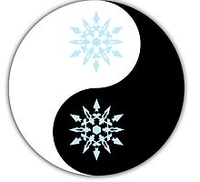Weiss yin and yang the other yang  by foggraven