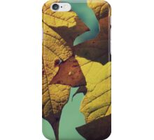 Tattered Leaves iPhone Case/Skin