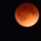 Full  Blood Moon Lunar Eclipse by Navigator