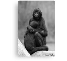 The Mother and Her Baby Canvas Print