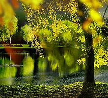 Spring Pond by Igor Zenin