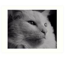 Delain Portrait in Black and White, #3 Art Print