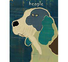 the beagle Photographic Print