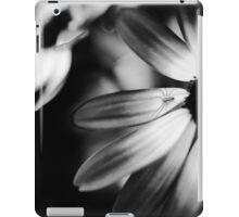 Itsy Bitsy Spider II iPad Case/Skin