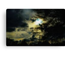It was a night they would remember for a very long time Canvas Print