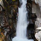 Christine Falls by Tori Snow