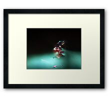 ©NS Snail On Water Surface IA Framed Print