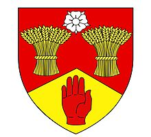 County Londonderry Coat of Arms  Photographic Print