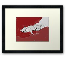 Two Cuddly Cats: Nap and Stare Framed Print