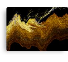 vincent's sky Canvas Print
