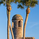 Bell Tower and Palms by Kenneth Keifer