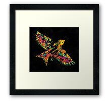 Voa Passarin Framed Print
