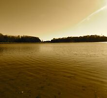 Pond by GleaPhotography