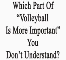 """Which Part Of """"Volleyball Is More Important"""" You Don't Understand?  by supernova23"""