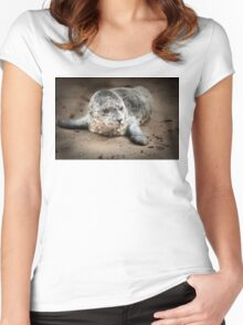 Sea Lion Baby close up Women's Fitted Scoop T-Shirt