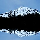 Mt. Rainier Panoramic Reflections by Tori Snow