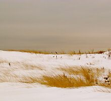Beach snow by GleaPhotography