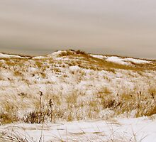 First encounter beach snow by GleaPhotography