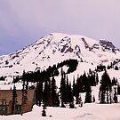 The Lodge at Mt. Rainier by Tori Snow