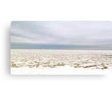Snowstorm Beach Canvas Print