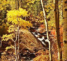 Lee Vining Creek #4: Eastern Sierra, Fall, 2013 by quistphotog