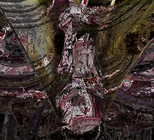 shredding the onion by Joshua Bell