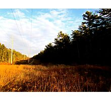 Land and Telephone wires Photographic Print