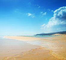 Paradise sandy beach and blue sky by dmitrytsvetkov