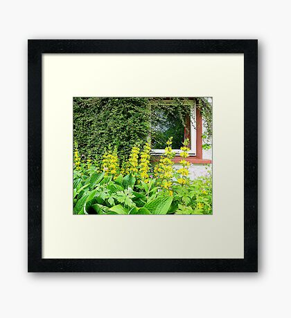 The Square Window Framed Print