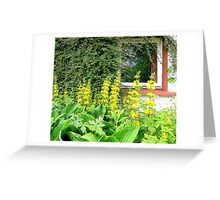The Square Window Greeting Card