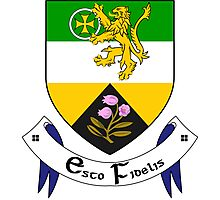 County Offaly Coat of Arms  Photographic Print