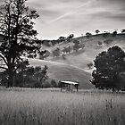 Resting place - Country Victoria  by Christine  Wilson Photography