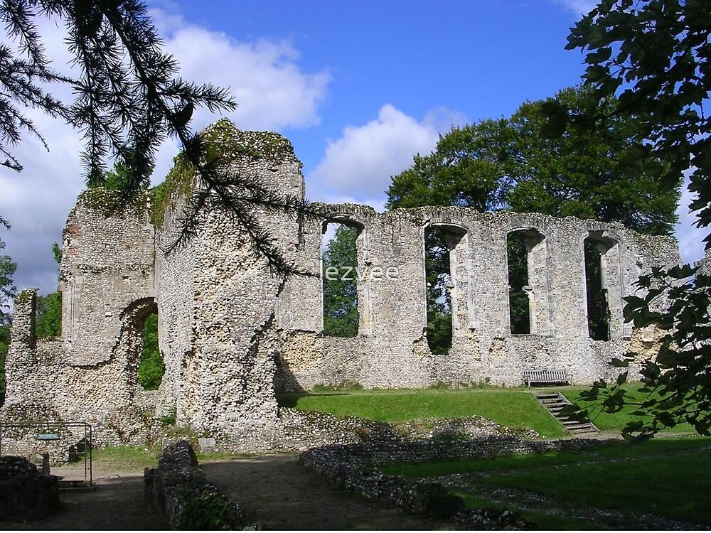 Palace Ruins at Bishops Waltham by lezvee