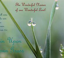 Rain Upon Mown Grass by aprilann