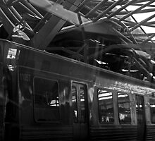 train beneath a very complex roof. by geof