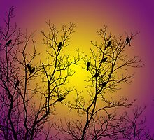 Silhouette Birds by Christina Rollo