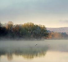 Misty Morning Sunrise Landscape by Christina Rollo