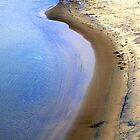 Shore Line by David Schroeder
