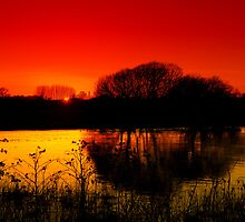 Sunset Over a Quiet Lake  by hootonles