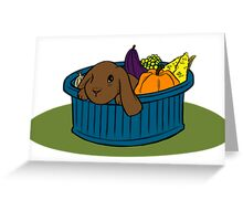 Bunny In A Bucket: Fall Greeting Card